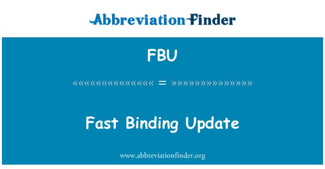 FBU: Fast Binding Update