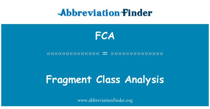 FCA: Fragment Class Analysis