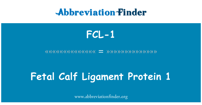 FCL-1: Fetal Calf Ligament Protein 1