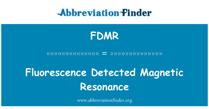 FDMR: Fluorescence Detected Magnetic Resonance