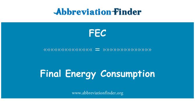 FEC: Final Energy Consumption