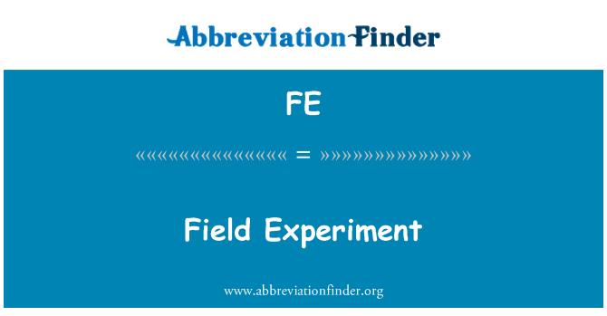 FE: Field Experiment