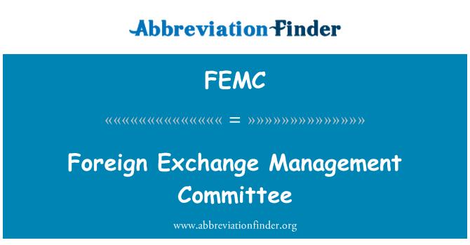 FEMC: Foreign Exchange Management Committee