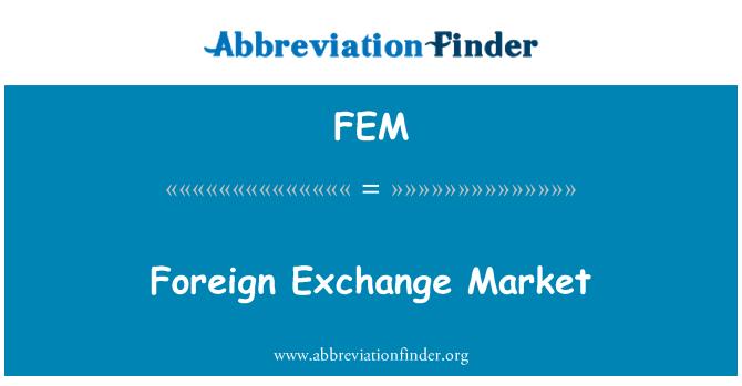 FEM: Foreign Exchange Market