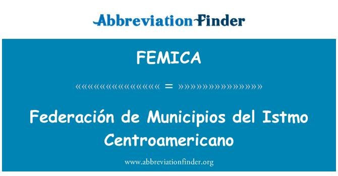 FEMICA: Federaciķn de Municipios del Istmo Centroamericano