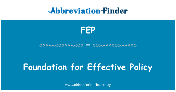 FEP: Foundation for Effective Policy