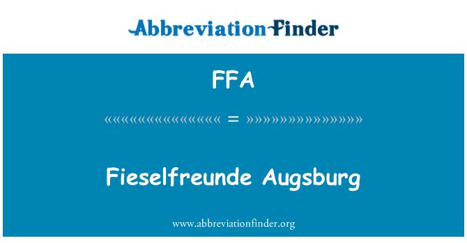 FFA: Fieselfreunde Augsburg