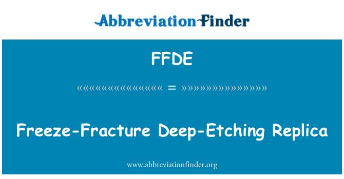 FFDE: Freeze-Fracture Deep-Etching Replica