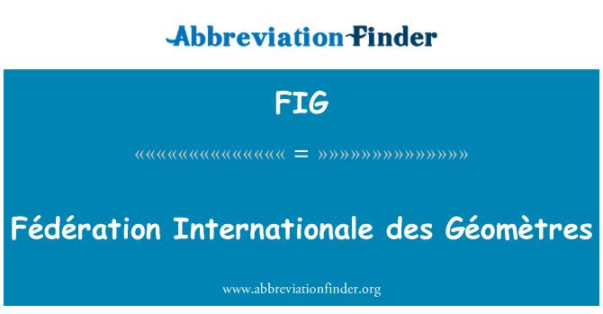FIG: Fédération Internationale des Géomètres