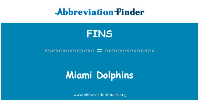 FINS: Delfines de Miami