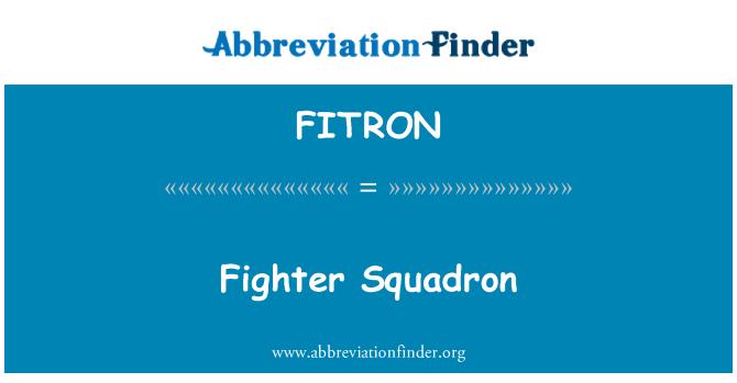 FITRON: Escuadrón de caza