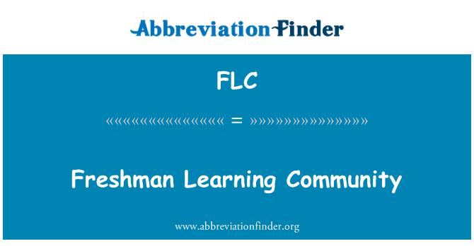 FLC: Freshman Learning Community