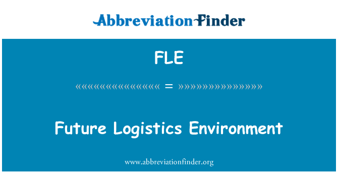 FLE: Future Logistics Environment