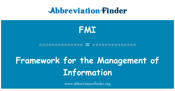 FMI: Framework for the Management of Information