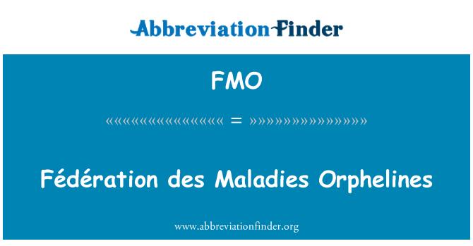 FMO: Fédération des Maladies Orphelines