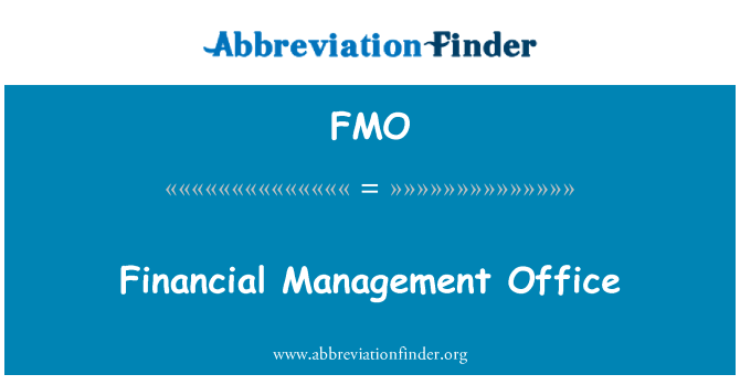 FMO: Financial Management Office