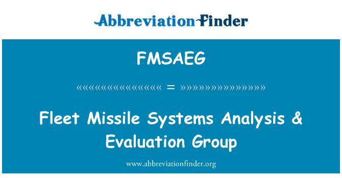 FMSAEG: Fleet Missile Systems Analysis & Evaluation Group
