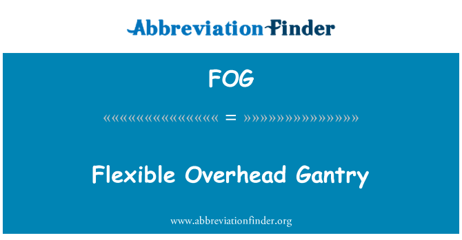 FOG: Flexible Overhead Gantry