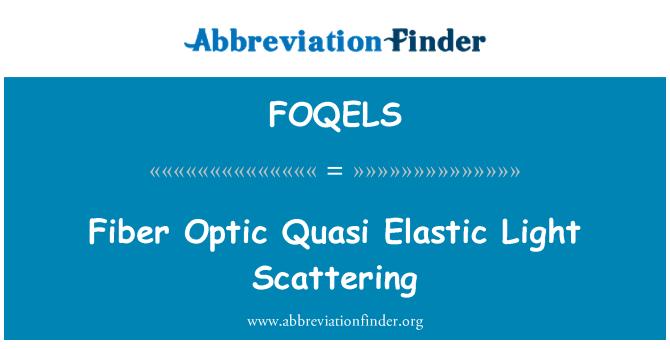 FOQELS: 纤维光学准弹性光散射