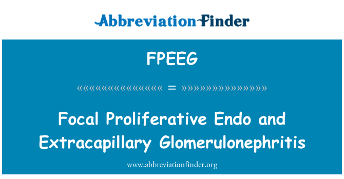 FPEEG: Focal Proliferative Endo and Extracapillary Glomerulonephritis