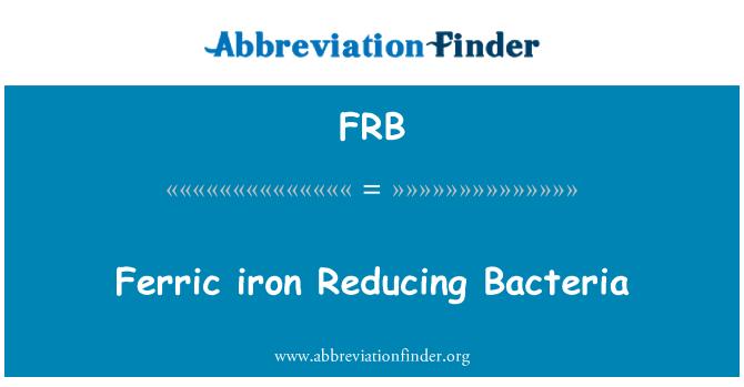 FRB: Ferric iron Reducing Bacteria