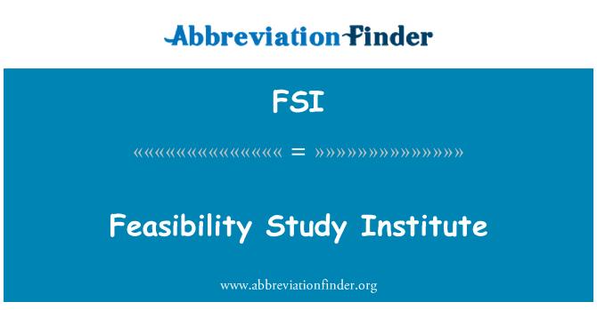 FSI: Feasibility Study Institute