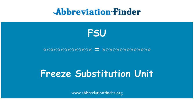 FSU: Freeze Substitution Unit