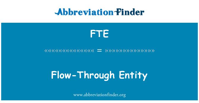 FTE: Flow-Through Entity