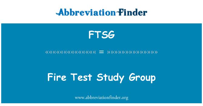 FTSG: Fire Test Study Group