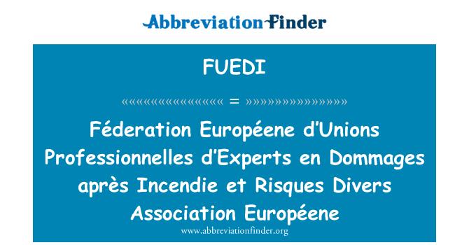 FUEDI: Féderation Européene d'Unions Professionnelles d'Experts en Dommages après Incendie et Risques Divers Association Européene