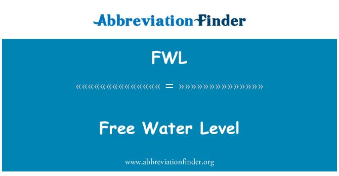 FWL: Free Water Level