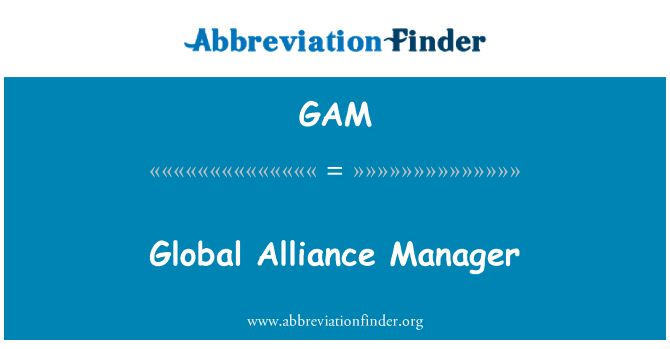 GAM: Global Alliance Manager