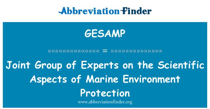 GESAMP: Grupo mixto de expertos sobre los aspectos científicos de la protección del medio marino