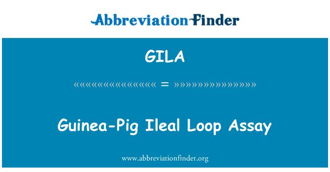GILA: Guinea-Pig Ileal Loop Assay
