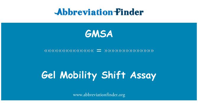 GMSA: Gel movilidad Shift Assay