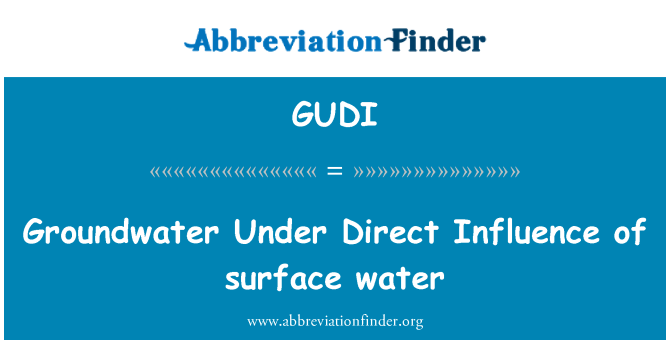 GUDI: Groundwater Under Direct Influence of surface water