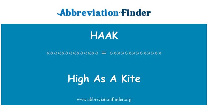 HAAK: High As A Kite