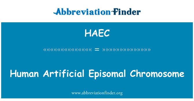 HAEC: Inimeste kunstlik Episomal kromosoomi