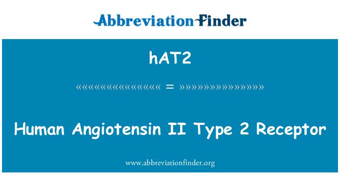 hAT2: Human Angiotensin II Type 2 Receptor
