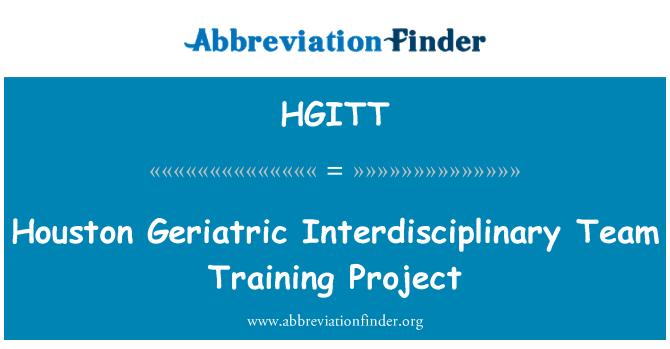 HGITT: Houston Geriatric Interdisciplinary Team Training Project