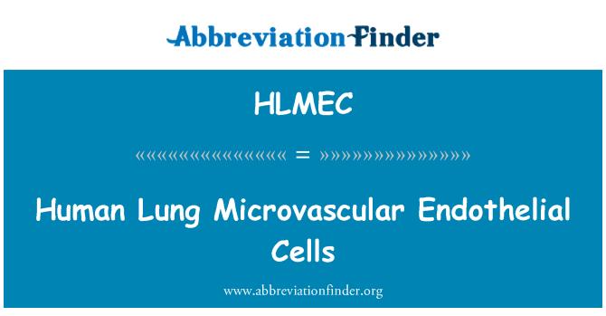 HLMEC Definición: Human Lung Microvascular Endothelial