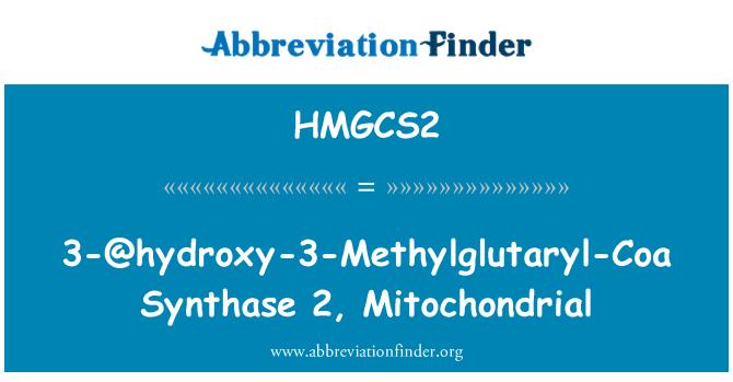 HMGCS2: 3-@hydroxy-3-Methylglutaryl-Coa Synthase 2, Mitochondrial