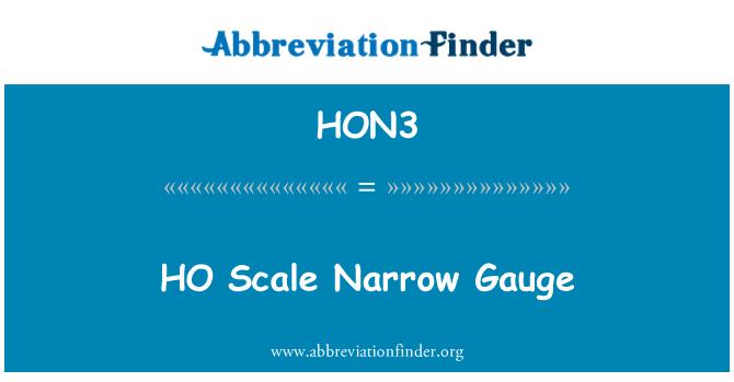 HON3: HO Scale Narrow Gauge
