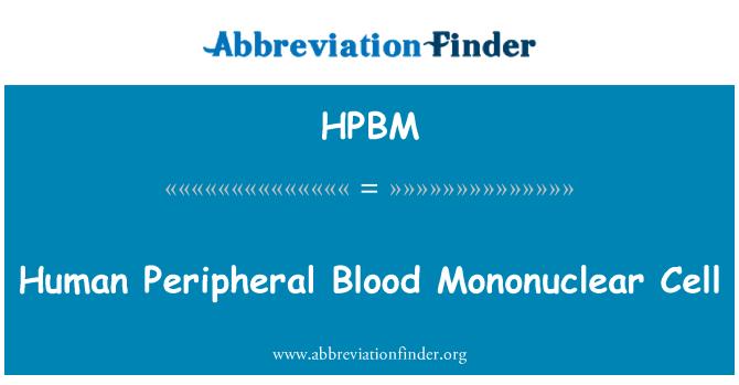 HPBM: Human Peripheral Blood Mononuclear Cell