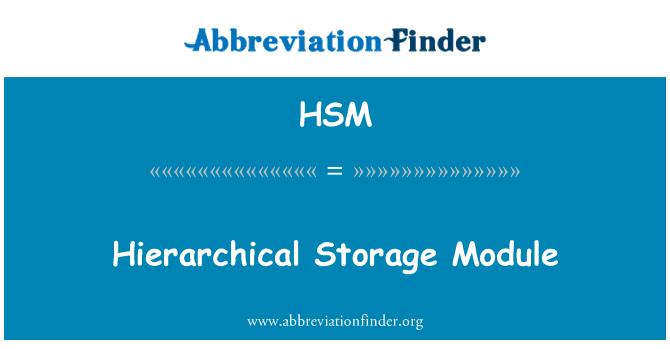 HSM: Módulo de almacenamiento jerárquico