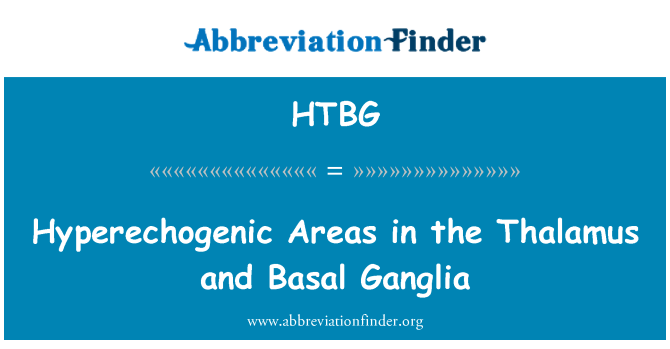 HTBG: Hyperechogenic Areas in the Thalamus and Basal Ganglia