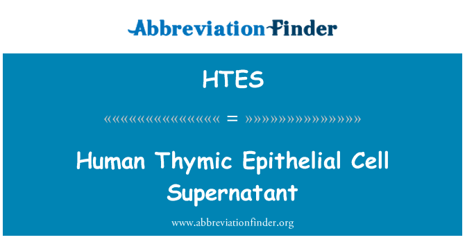 HTES: Human Thymic Epithelial Cell Supernatant