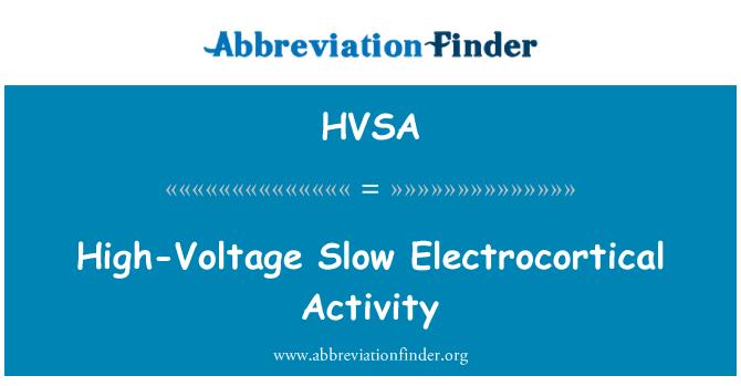 HVSA: High-Voltage Slow Electrocortical Activity