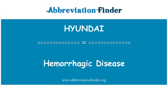 HYUNDAI: Enfermedad hemorrágica