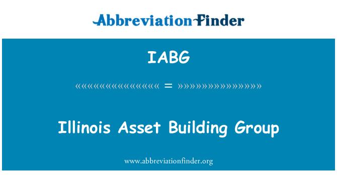 IABG: Illinois Asset Building Group